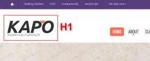 Empty H1 tag logo