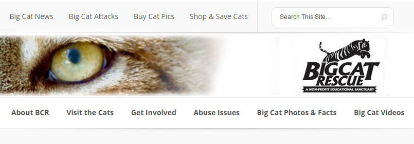Big_Cat_Rescue_home_page