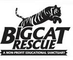 bigcatrescue logo