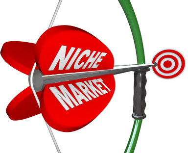 Niche Market - Bow and Arrow Aimed at Bulls Eye